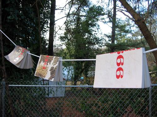 clothesline_2666_sm